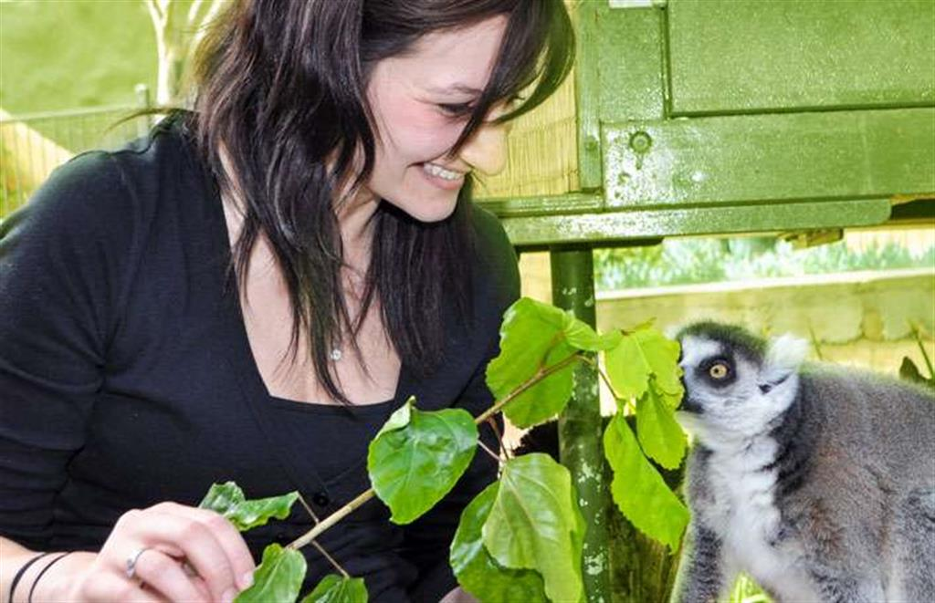Lemur Encounter and a day at Adelaide Zoo